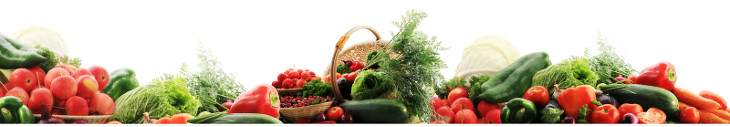 Banner Gemüse
